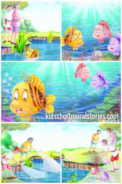 THE STORY OF THE THREE FISHES  - PANCHATANTRA STORIES